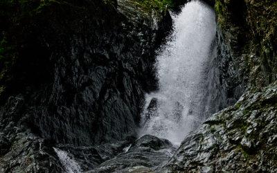 滝屋の遊び場