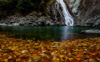 日裏山谷の秋