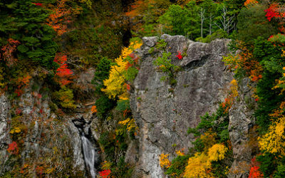 秋色綾なす紀伊の滝