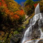 秋の終わりに東俣谷