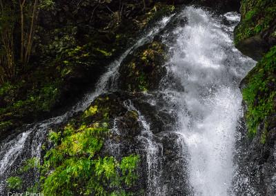 台高蓮川ヌタハラ谷不動滝(夫婦滝)下段