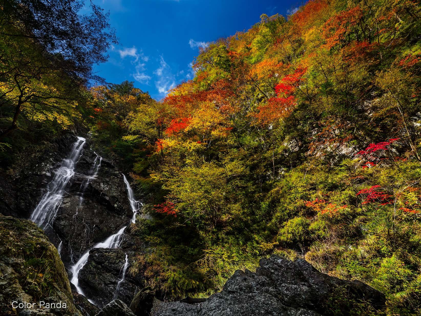 サスケ滝の秋