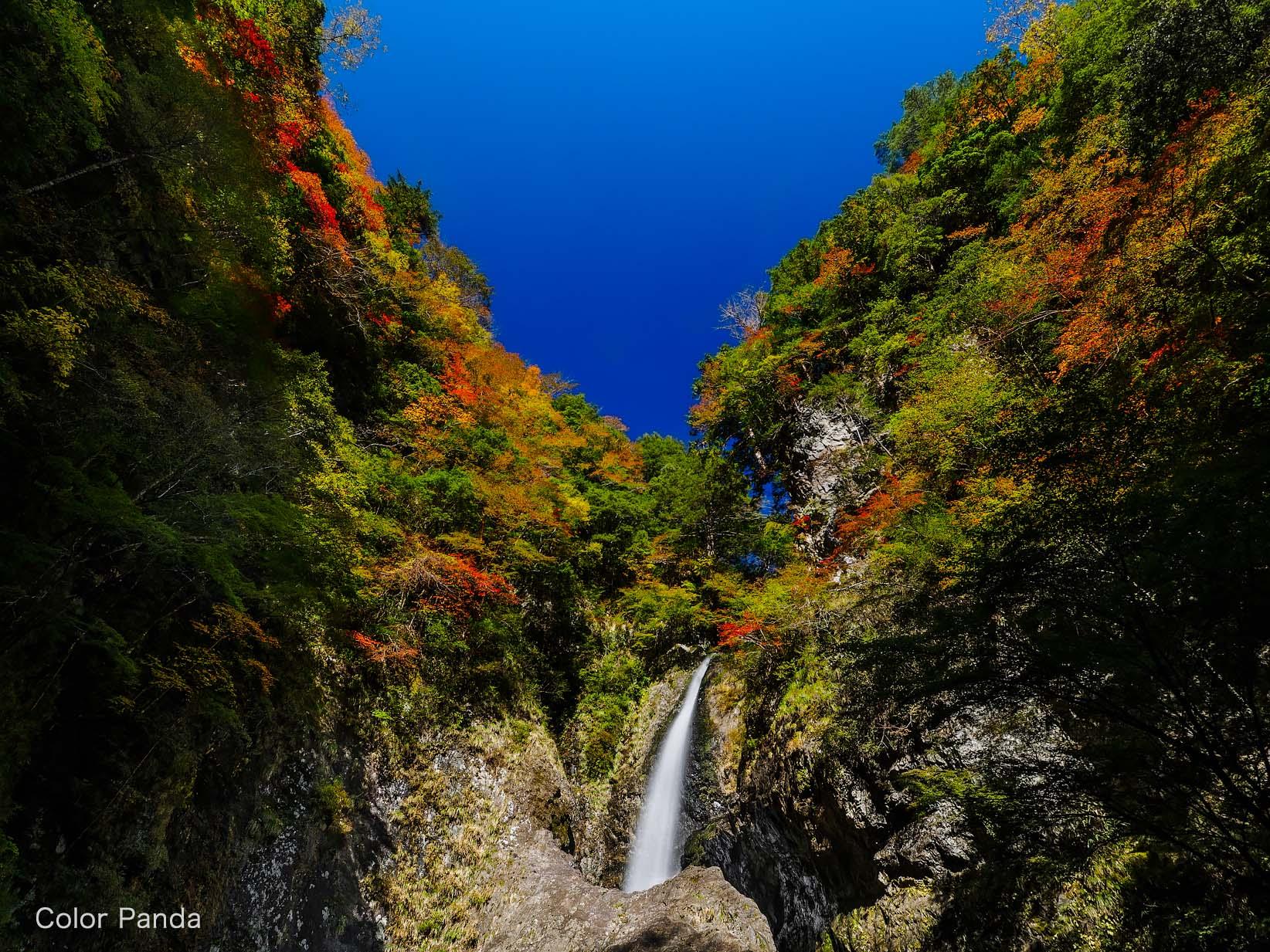 旭ノ川の秋