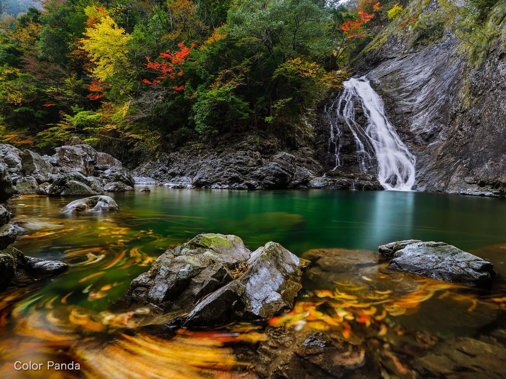 秋彩日裏山谷
