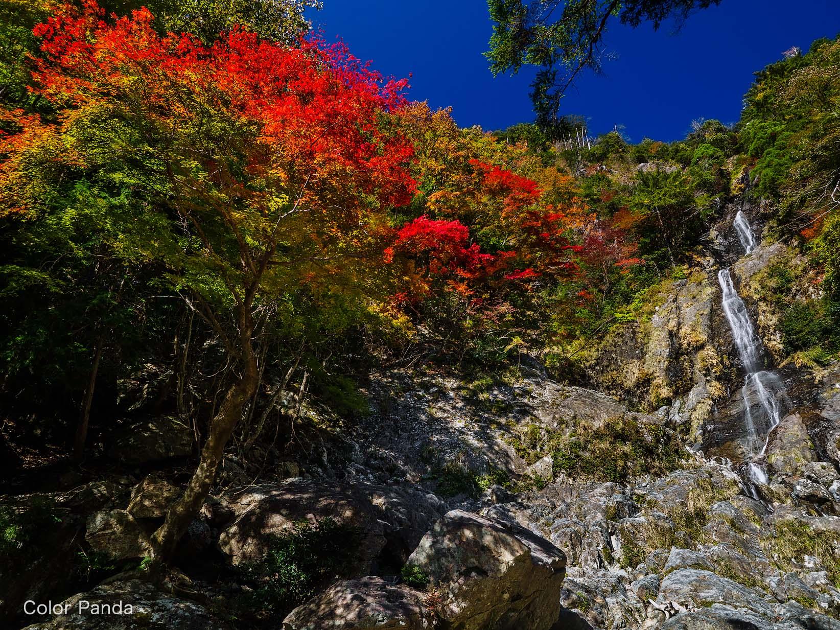 秋空高く駒ノ滝