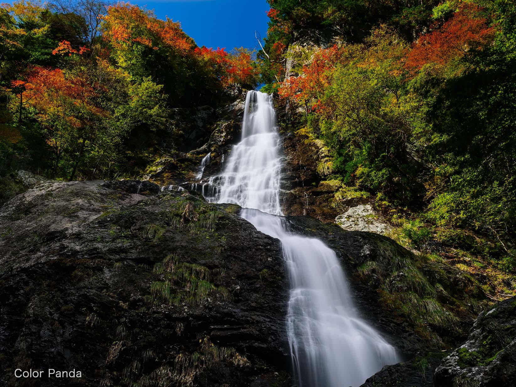下多古川で過ごす秋
