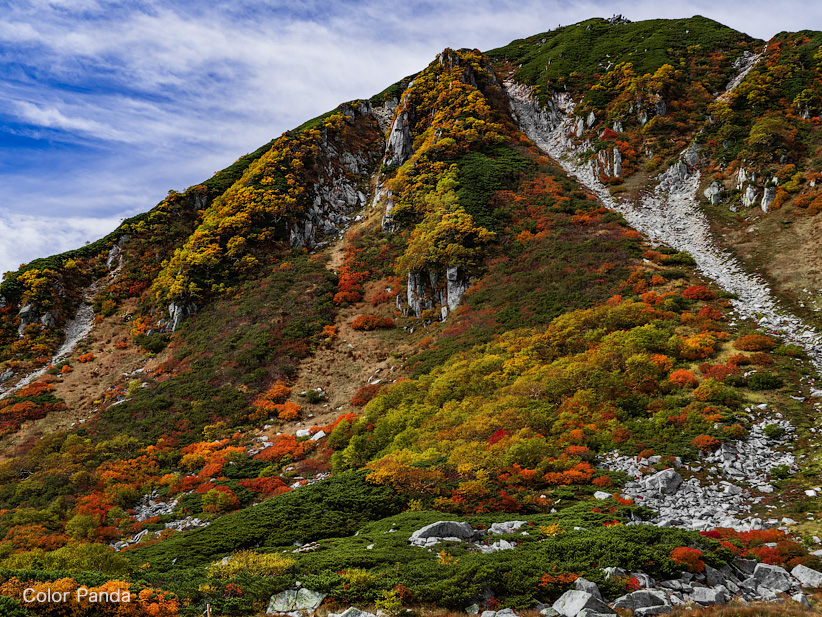 駒ヶ岳を彩る秋